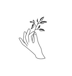 Hand hold floral twig plant with leaves vector