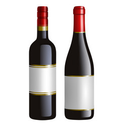 isolated red wine bottles vector image