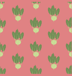 kohlrabi vegetable pattern vector image