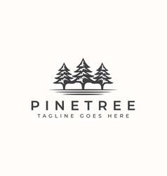 vintage pine tree logo template vector image
