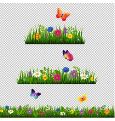 grass border with flower collection isolated vector image