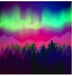 landscape with northern lights and spruce forest vector image