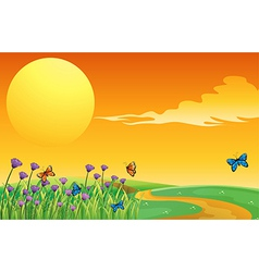 A group of butterflies in the hills vector image