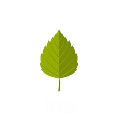 Birch leaf icon flat style vector