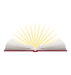 Colorful silhouette with holy bible open vector