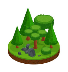 isometry of a forest range of trees and conifers vector image
