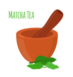 Matcha tea mortar pestle cartoon style vector
