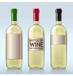 Transparent realistic bottle of wine vector image