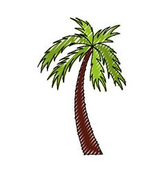 scribble color palm cartoon vector image vector image