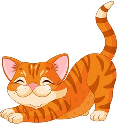 Cute kitten stretching vector image vector image