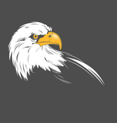eagle head on a dark background vector image