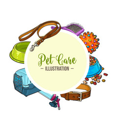 veterinary banner of pet accessories with round vector image vector image