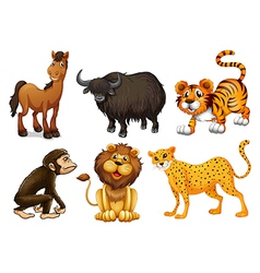 Different kinds of four-legged animals vector image