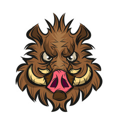 boar head sketch vector image