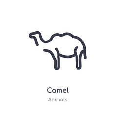 Camel outline icon isolated line from animals vector