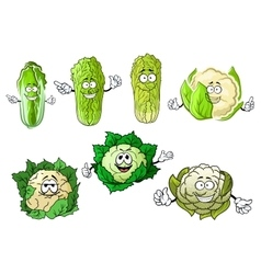 Cartoon cauliflowers and chinese cabbage vector