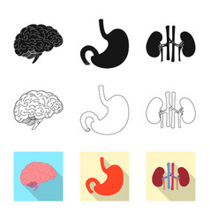 Design of body and human icon collection vector