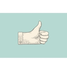 drawing hand sign thumbs up in engraving style vector image