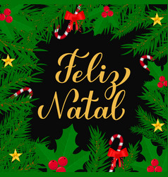 Feliz natal calligraphy hand lettering with fir vector
