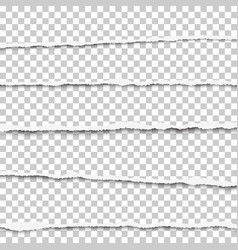 five horizontal torn layers transparent paper vector image