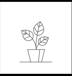 Houseplant editable line vector