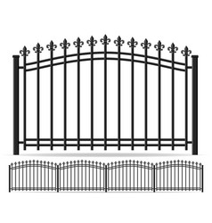 iron forged fence vector image