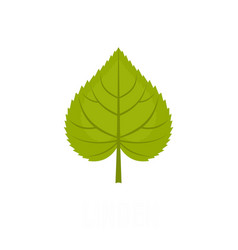 Linden leaf icon flat style vector
