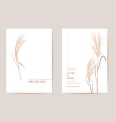 Minimal wedding invitation pampas grass boho card vector