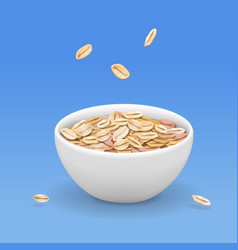 oatmeal muesli in white bowl realistic vector image