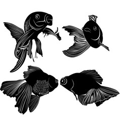 set black silhouette goldfish isolated vector image