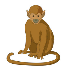snub nosed monkey icon cartoon style vector image