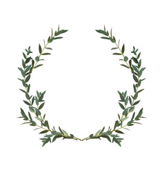 Thyme leaf green wreath isolated medicinal vector