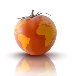 yellow tomato with planet earth vector image