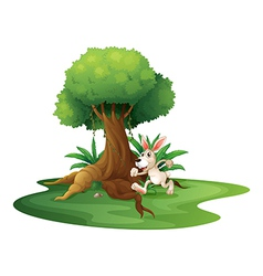 A rabbit playing near the big tree vector image