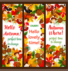 Autumn leaf banner with fall season nature frame vector