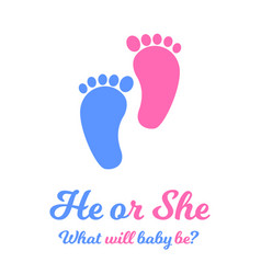 Baby boy and girl footprints blue and pink colors vector