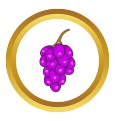 Bunch of wine grapes icon vector