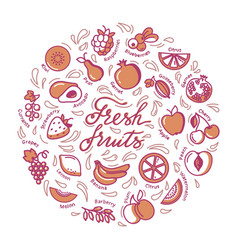 circular with fruit and text for shop vector image