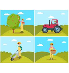 Farmer gathering apples set vector