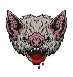 Head vampire bat vector
