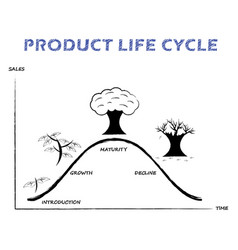 Product life cycle line on white background vector