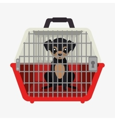 Puppy pet travel carrier icon vector