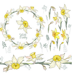 Round frame with pretty yellow daffodils festive vector