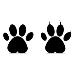set of paw prints vector image