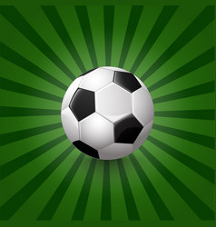 soccer ball on background vector image