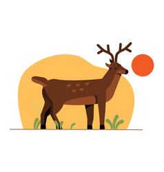 spotted deer vector image