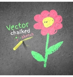 Chalk drawing of flower vector image vector image