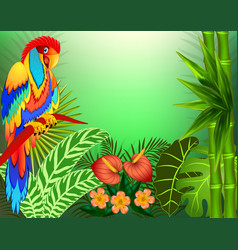 background with tropical leaves and parrots and vector image