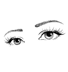 Beautiful female eye with long eyelashes vector