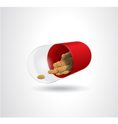 Cookies in the pills vector image